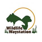 wildlife-waystation-white-150x150-circle