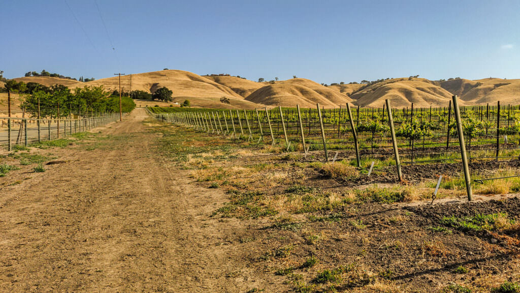 West Vineyards